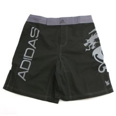 MMA Shorts - SILVER DRAGON